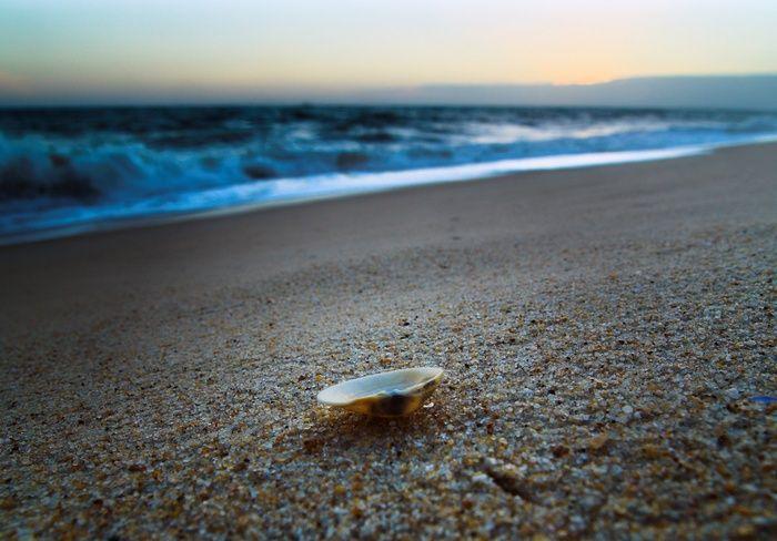 Прикольные картинки лето море