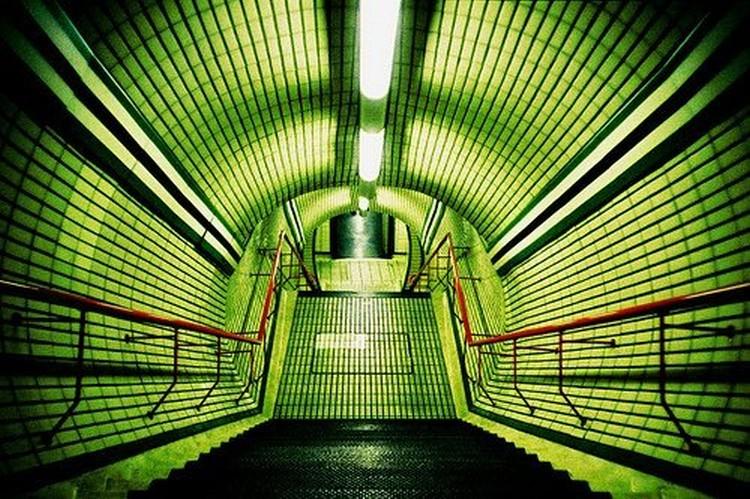 Зеленая подборка (28 фото)