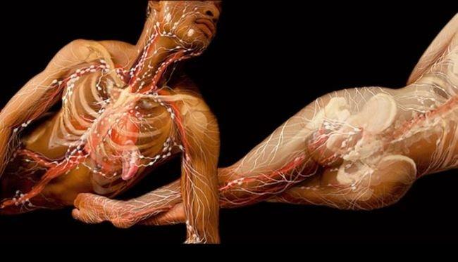 El cuerpo humano por dentro (imagenes sorprendentes) - Imágenes ...