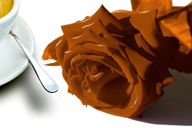 Шоколадная подборка