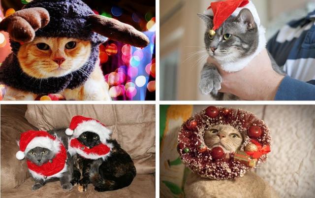 Новогодние животные