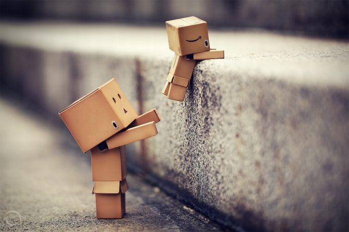 Жизнь коробочек