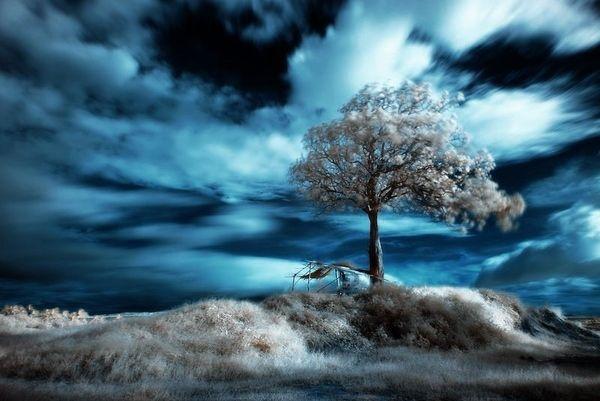 Красивые инфракрасные фото