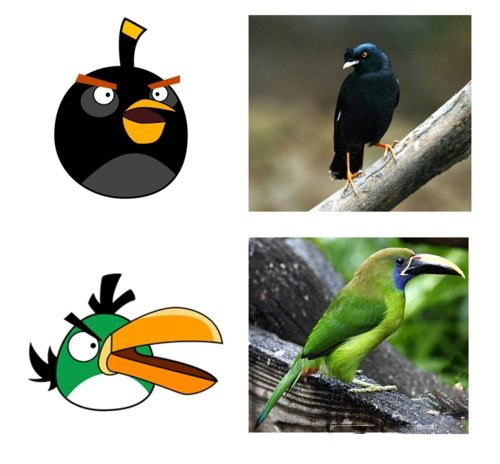 ��������� Angry Birds ����������