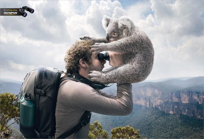 Реклама биноклей Olympus