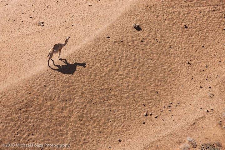 Кения в объективе фотографа Michael Poliza