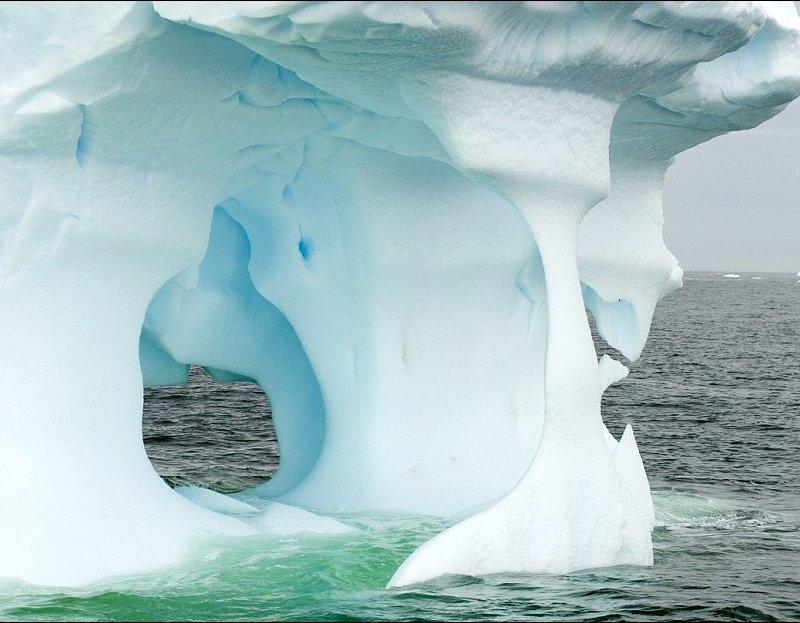 Айсберги у берегов Антарктиды