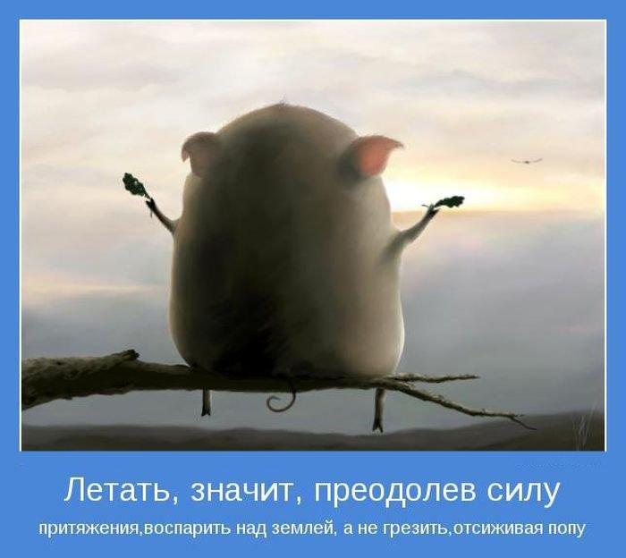 прикольные картинки мотиваторы:
