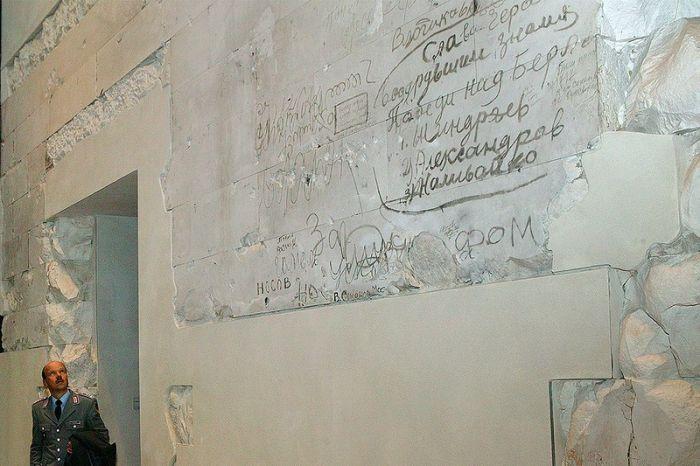 прикольные обои на стену: