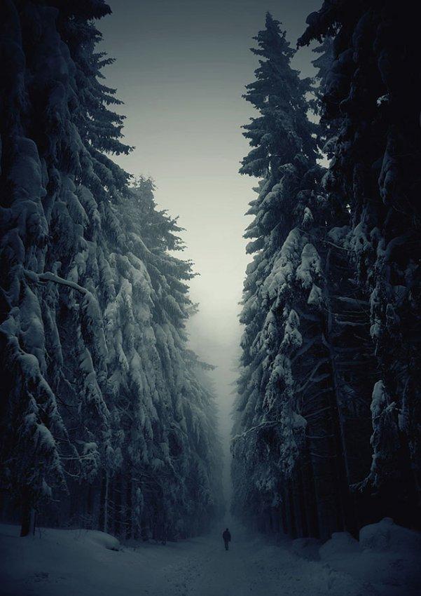22 декабря 2012 01 54 skif комментариев