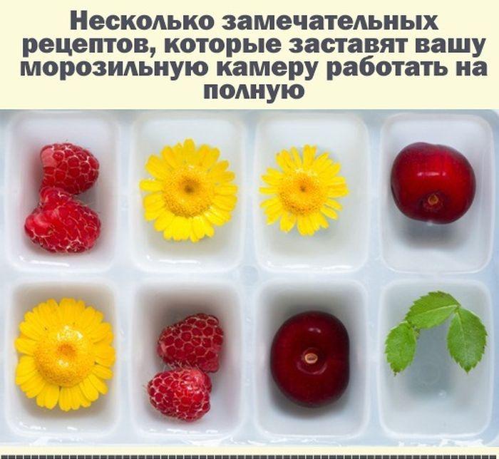 Рецепты для морозильника