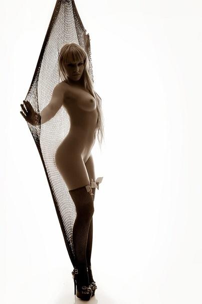 Порноактриса Лола Тэйлор намерена податься в политику 18+