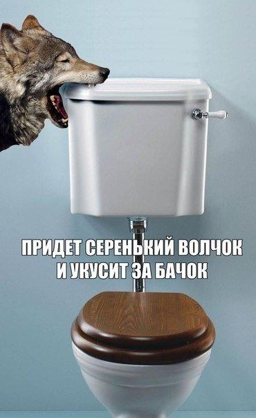 1421005139_foto-prikoly-i-yumor-za-voskr