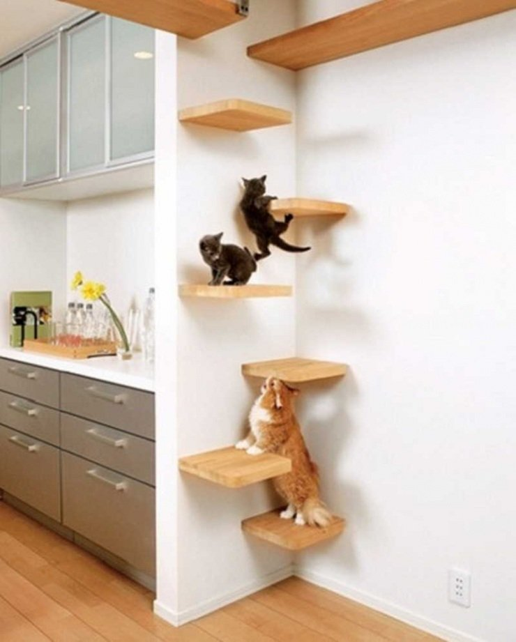 Cat spray for furniture