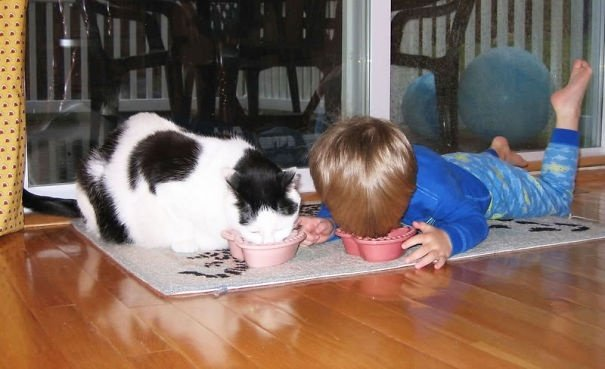 Дети и животные (14 фото)