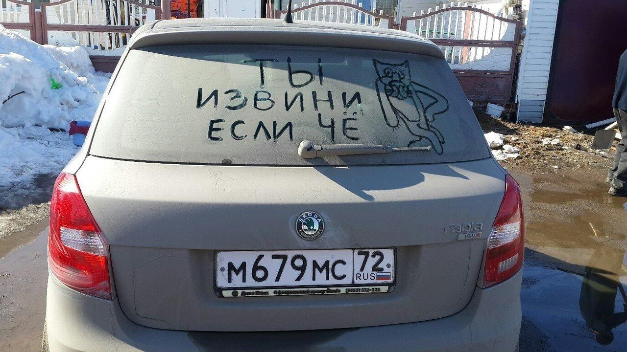 Картинки на машину с приколами