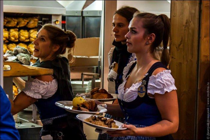 Молодая девушка обслуживает гостей фото 526-423