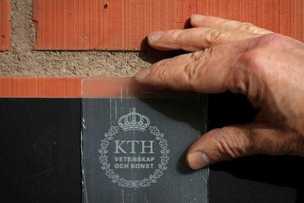 Шведские ученые изобрели прозрачную древесину