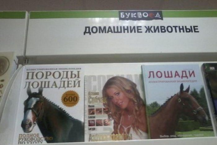 Юмор в книжных магазинах