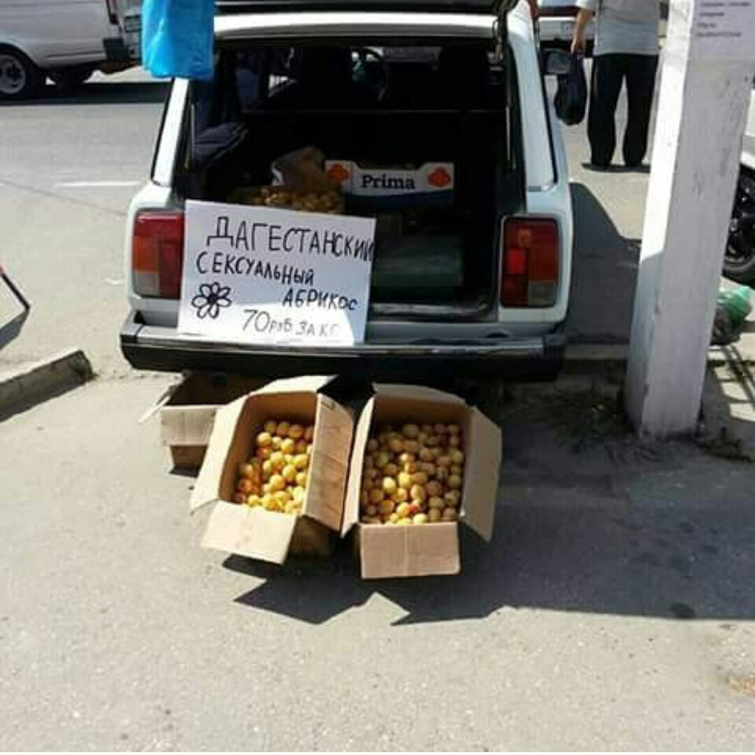 Дагестанские картинки приколов