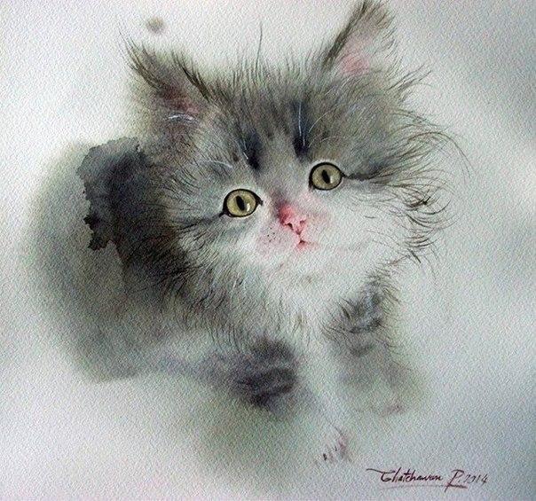 Красивые рисунки котят / художник: Chatchawarn Ruksa