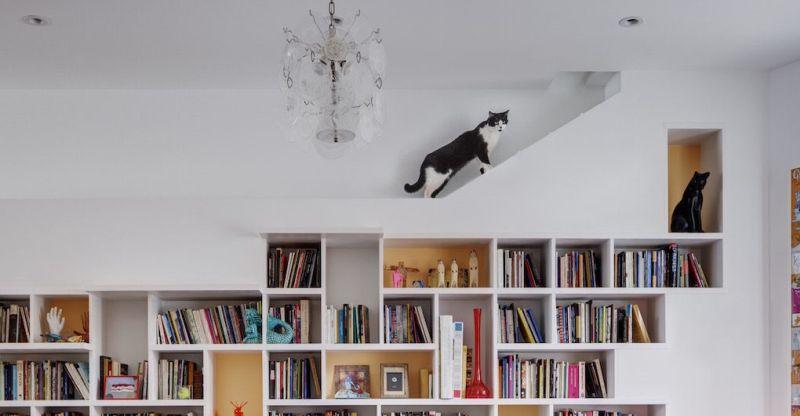 Интерьер дома для владельцев котов