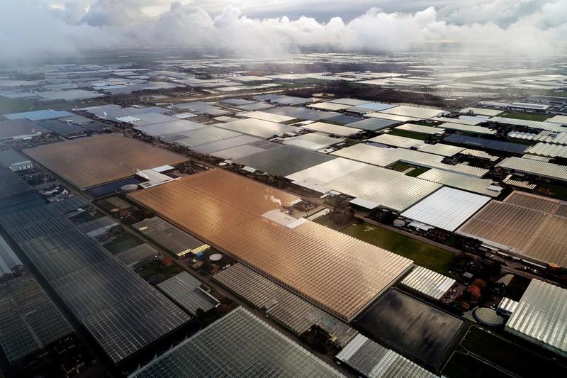 Инновации на фермах в Нидерландах
