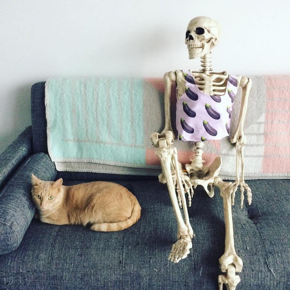 Картинки приколы про скелеты, для одноклассников