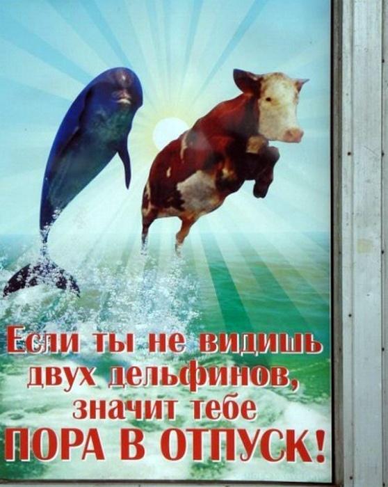 https://www.rulez-t.info/uploads/posts/2018-12/1543617611_smeshnaja-reklama-i-vyveski-v-rossii-17.jpg